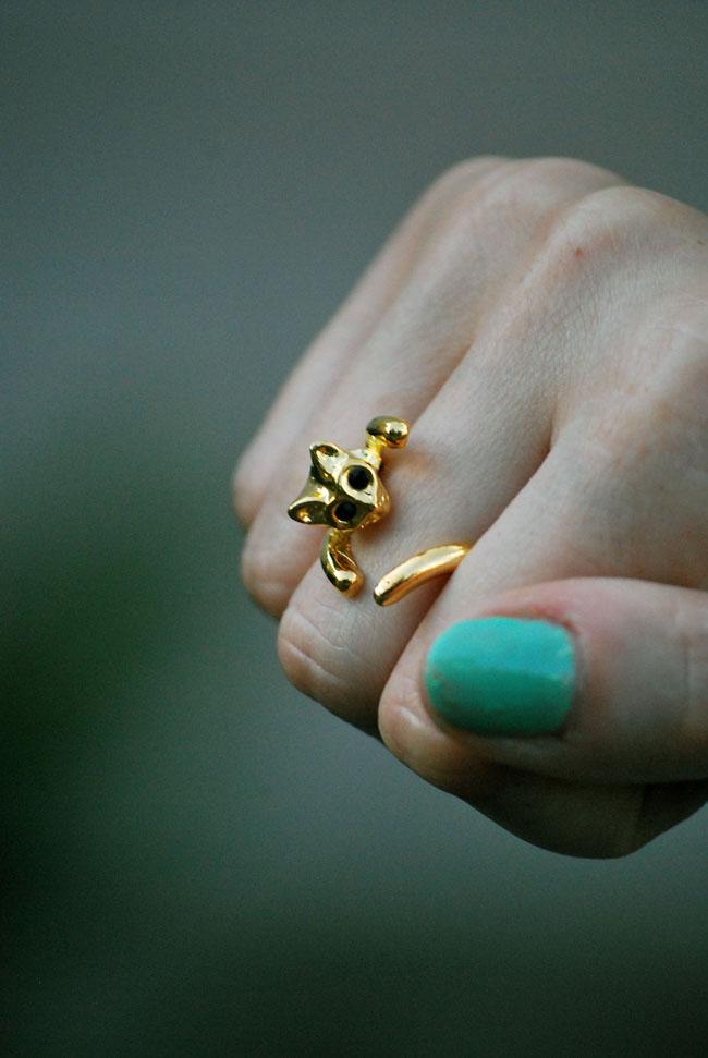Kotek pierścionek