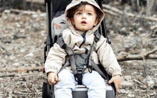 wkładka do wózka spacerowa dla chłopca